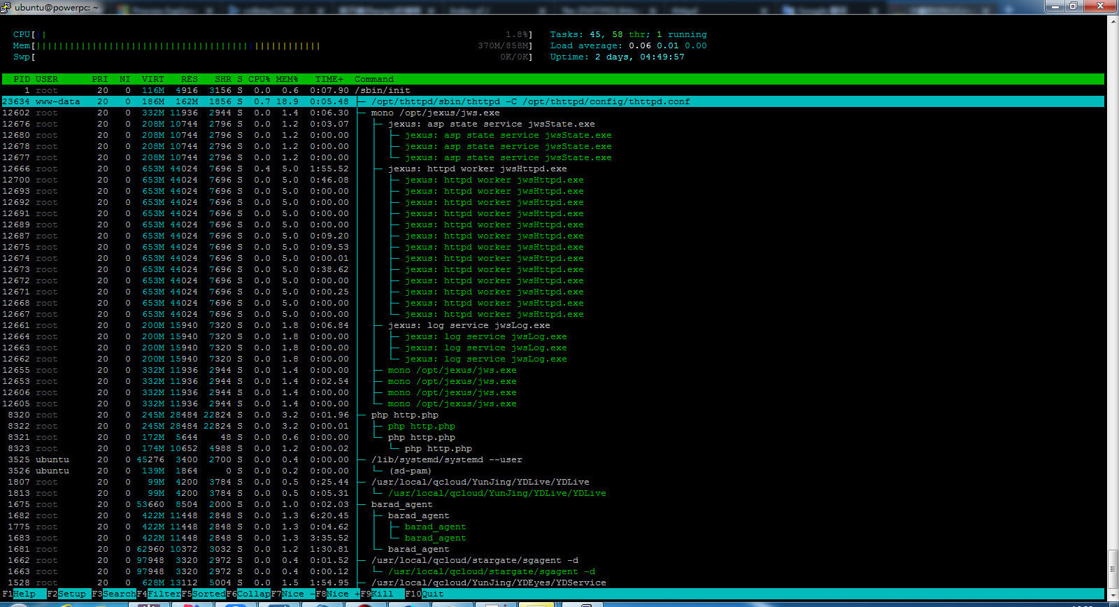 thttpd-htop.png